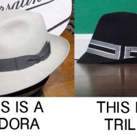 A trilby is a fedora in the same way a dog is a wolf.